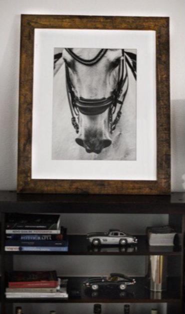Série: Cavalos Medidas: 120x100 Moldura: madeira nobre